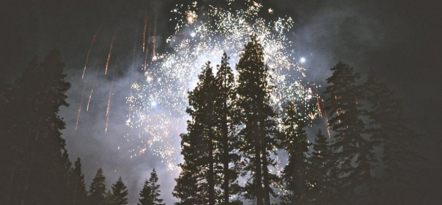 Fireworks over trees in the mountains