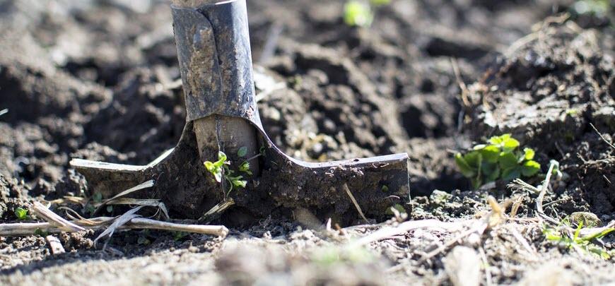 Colorado Winter Gardening Tips Recolorado Home Blog
