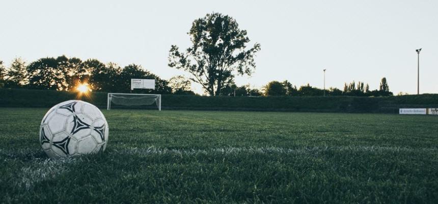 soccer ball field grass perfect home