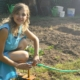 backyard garden diy woman